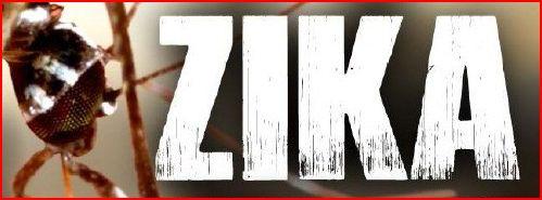 zika16