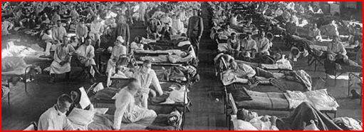 pandemia-17