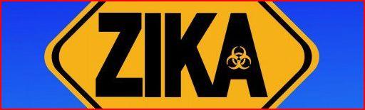 zika-17